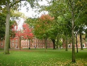 Image result for image harvard yard
