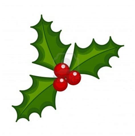 holly leaves clipart    clipartmag