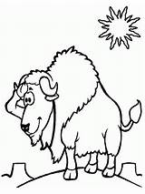 Bison Coloring Printable Desert Realistic Sheet Colouring Coloringcrew Were sketch template