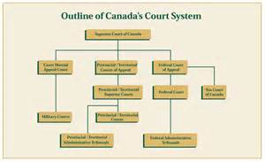 The Judicial Structure