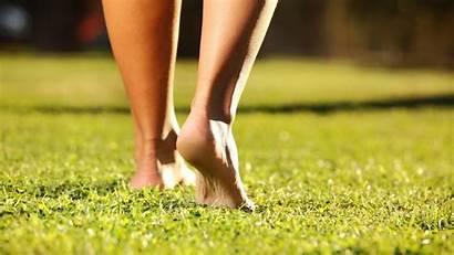 Feet Grass Barefoot Legs Wallpapers Desktop Backgrounds