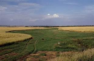 Interior Plains Region