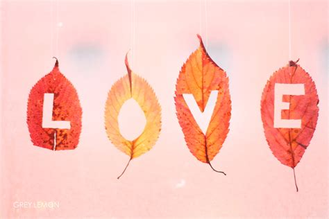 Fall Love Photography  Amazing Wallpapers