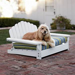 best 25 adirondack chairs ideas on pinterest adirondack With outside dog furniture