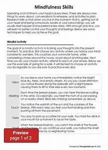 Dbt Skills Manual Handouts Pdf