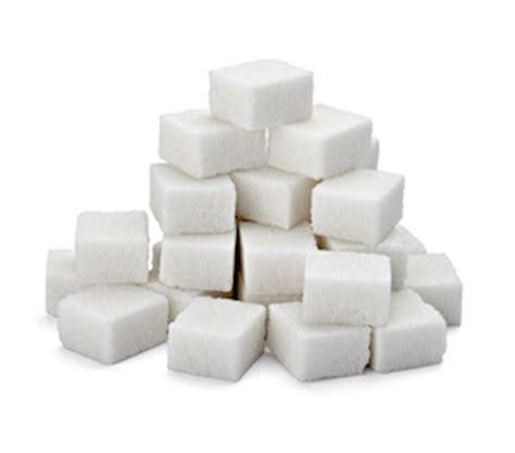 Zucker und seine Folgen › Fitness & Gesundheit