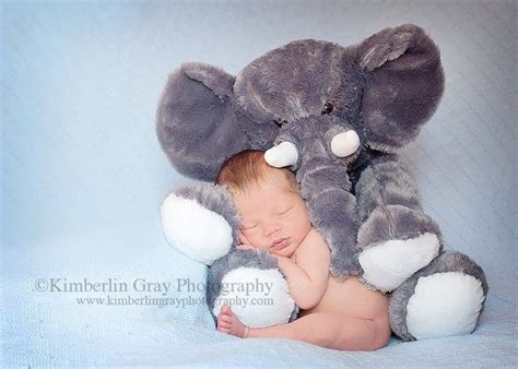 baby photo shoot ideas images  pinterest