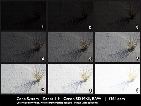 zone system  photography pictureline