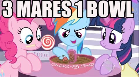 My Little Pony Know Your Meme - image 373326 my little pony friendship is magic know your meme