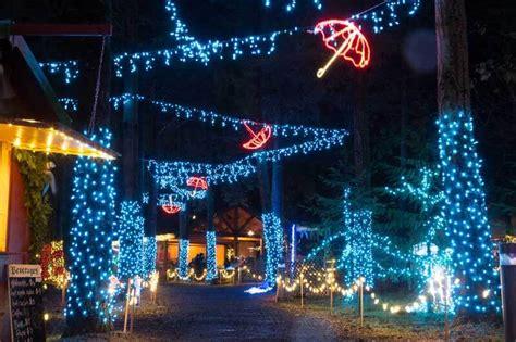 10 gardens that glitter with holiday lights garden