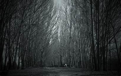 Forest Creepy Wallpapers Spooky Haunted Aesthetic Dark