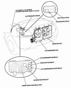 1994 Honda Civic Dx Wiring Diagram Html