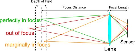 sensor size perspective and depth of field photography life