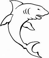 Shark Coloring Pages Animals sketch template