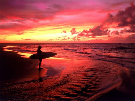 Surfers Hawaii Surfing