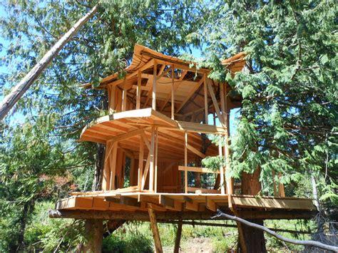 Sunray Kelley's New Treehouse  The Shelter Blog