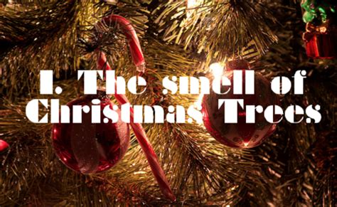 the smell of christmas trees pictures photos and images
