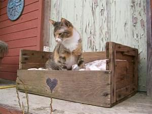 Arbre A Chat En Palette : id es originales de meubles en palettes les chatvaliers de la table ronde gatos mascotas et ~ Melissatoandfro.com Idées de Décoration