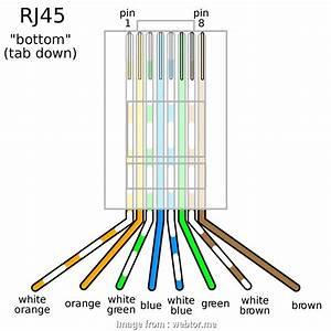 Rj45 Wiring Diagram  Internet Most Wiring Diagrams