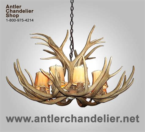 Antler Chandelier Shop by On Sale Today Antler Chandelier