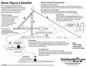 Best Image Of How To Make Your Own Figure 4 Deadfall Trap