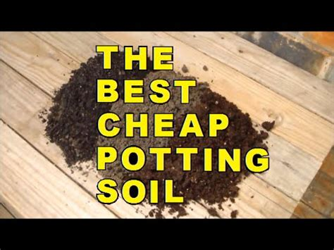 The Best Cheap Potting Soil Youtube