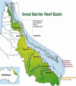 Rainforests And Coral Reefs In The News    Great Barrier