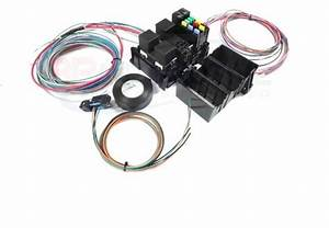 Ls Swap Wire Harness Fuse Block With Fans Stand Alone
