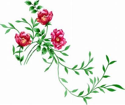 Transparent Flowers Clipart Background Flower Clip Pink