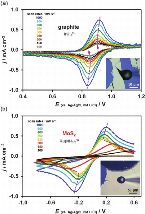 temporal   electrode kinetics expressed  consecutive  scientific diagram