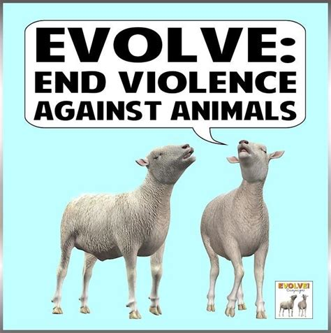 postersslogans animal rightsveganism images