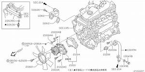 Water Pump  Cooling Fan  U0026 Thermostat For 1999