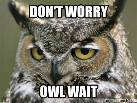 Owl Who Meme - owl meme memes