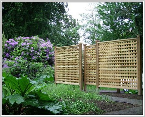 Outdoor Trellis Panels by The 25 Best Lattice Fence Panels Ideas On