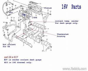 1995 Geo Tracker Engine Diagram Diagrams4procedures Verdetellus It