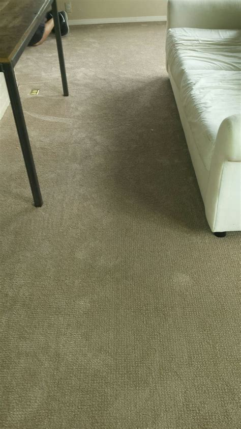 flooring cincinnati 99 best images about for the home on pinterest shaw carpet vinyl planks and mason ohio