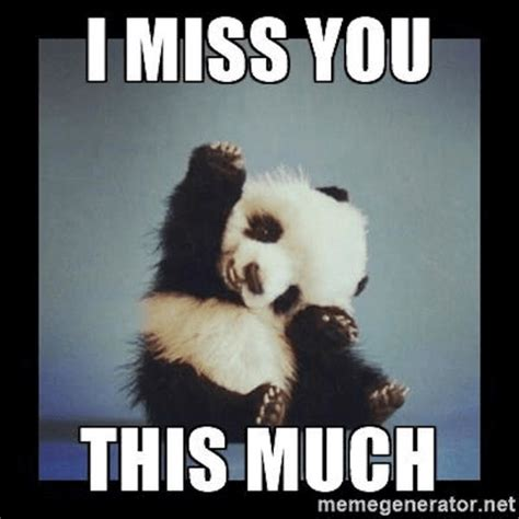 Miss You Memes 17 Of The Best I Miss You Memes Top Mobile Trends