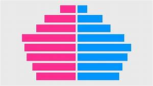 Count By Age Chart Population Pyramid Chart Excel Youtube