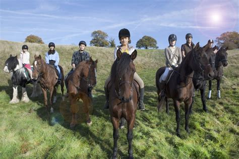 the fires of a novel free rein brings pony books to netflix the