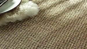 Comment Nettoyer Un Tapis Blanc : 5 astuces de grand m re pour nettoyer les tapis ~ Premium-room.com Idées de Décoration