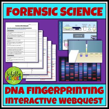 Building dna gizmo answers, gizmo assessment answers, explorelearning gizmo answer key, exploration learning gizmos, student. Student Exploration Building Dna Worksheet Answers + My PDF Collection 2021