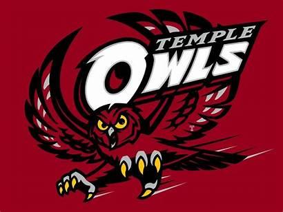 Temple Owls Owl Football Basketball Logos College