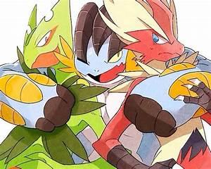 Mega Hoenn Starters. | Pokémon | Pinterest