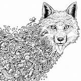 Coloring Pages Animals Complex Animal Popular 1000 sketch template