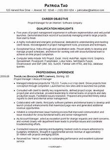 Resume for an it project manager susan ireland resumes for Software executive resume