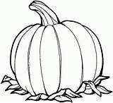 Coloring Pumpkin Printable Pages sketch template