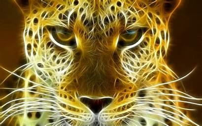 Leopard Wallpapers Desktop Cheetah