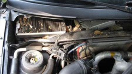 Cabin Air Filter Why When Replace Mdh Motors