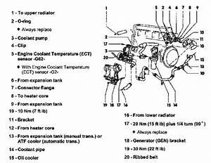 2000 Vw Jetta 2 0 Engine Diagram
