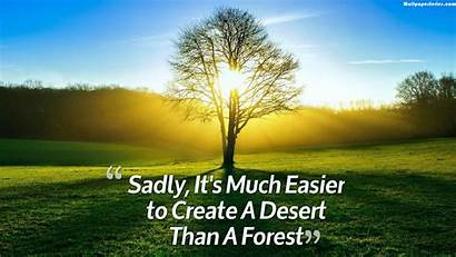 Quotes Nature Environmental Wallpapers Environment Backgrounds Trees